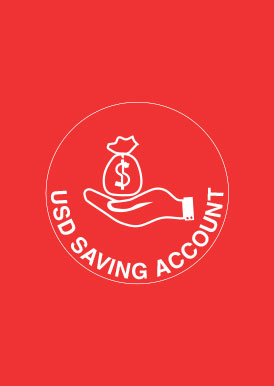 USD  SAVINGS ACCOUNTS